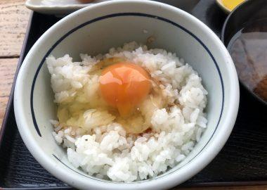 たまごかけごはんを堪能。350円でご飯&卵が何杯でもおかわり自由。ただ卵だけの追加は30円となる。