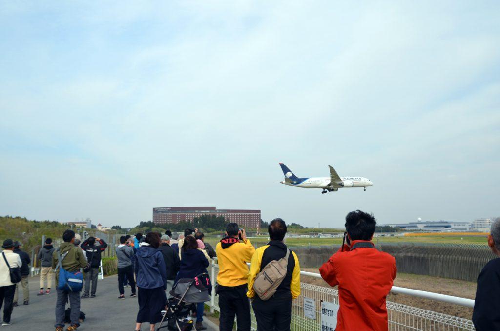 着陸直前の飛行機が間近に見ることができた